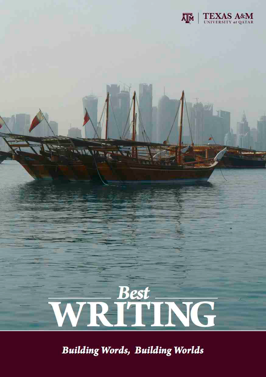 Best Writing 2014 book cover is image of a ship on water with a city in background behind fog
